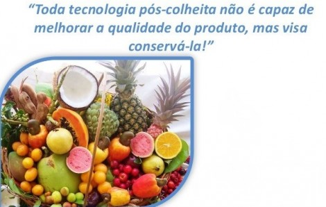 cuidados basicos colheita hortofruticolas