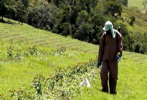 aplicacao herbicida