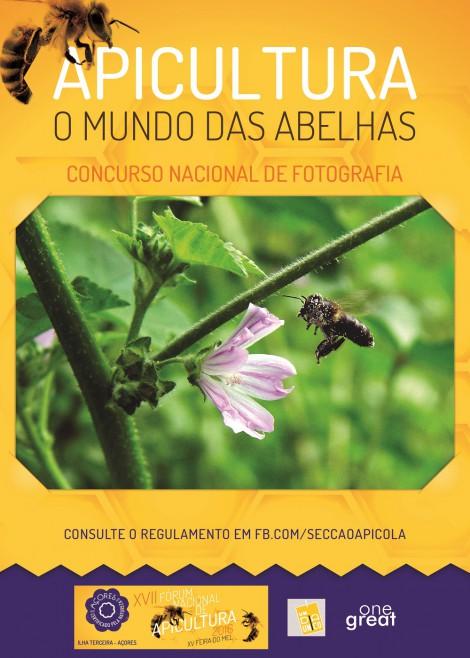 cartaz conc foto apicultura
