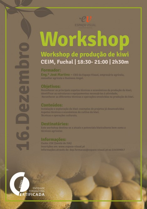 workshop kiwi CARTAZ
